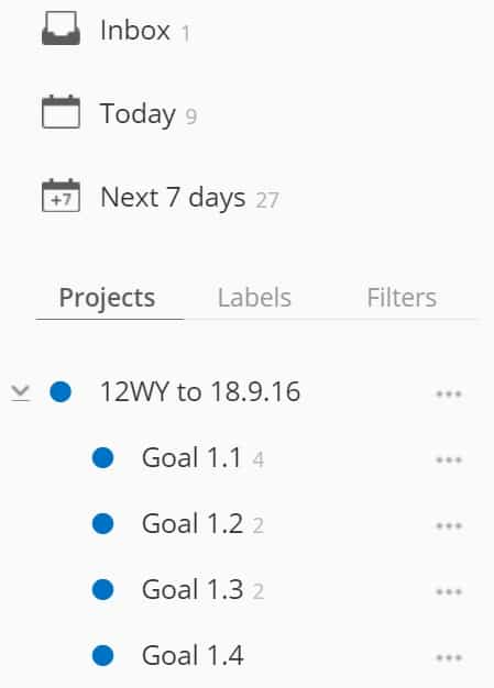12 Week Year in Todoist